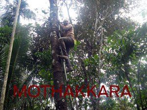 Mothakkara