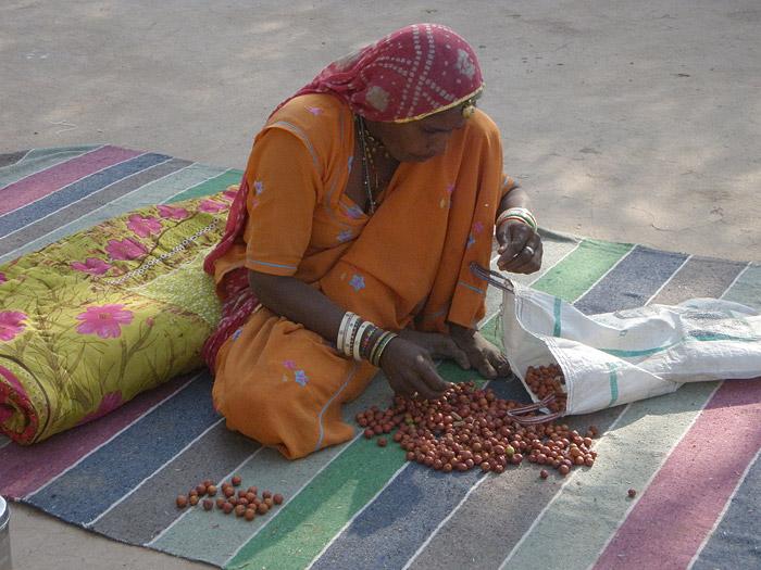 Frau mit Bor in Rajasthan