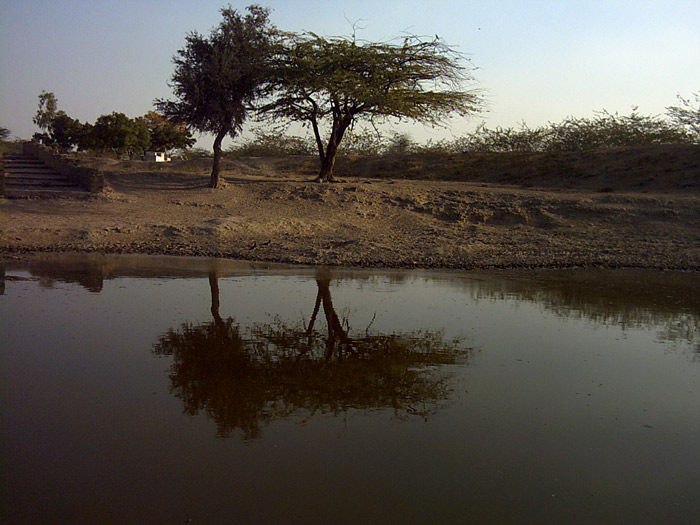 Pond in Chandelao/Rajasthan