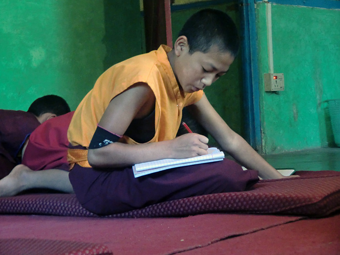 student in the monastery school dubdi/sikkim