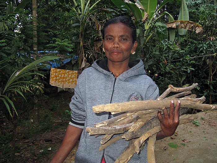 woman carrying wood in Kerala