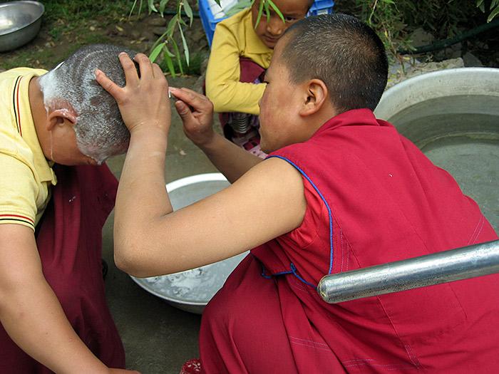 shaving nuns head in Ladakh