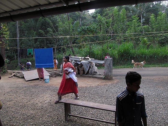 scene in Kerala